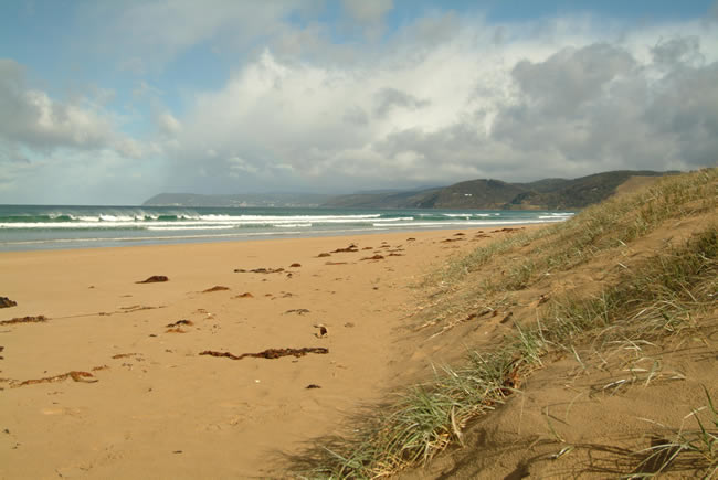 Moggs Creek foreshore, looking towards Lorne, Great Ocean Road, Victoria, Australia
