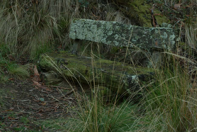 Old lichen covered seat, Argyle mineral springs, Victoria, Australia