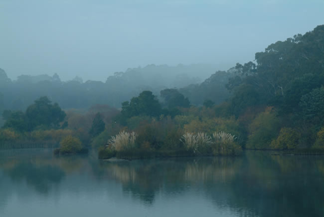 Crisp and foggy, Lake Daylesford, Victoria, Australia
