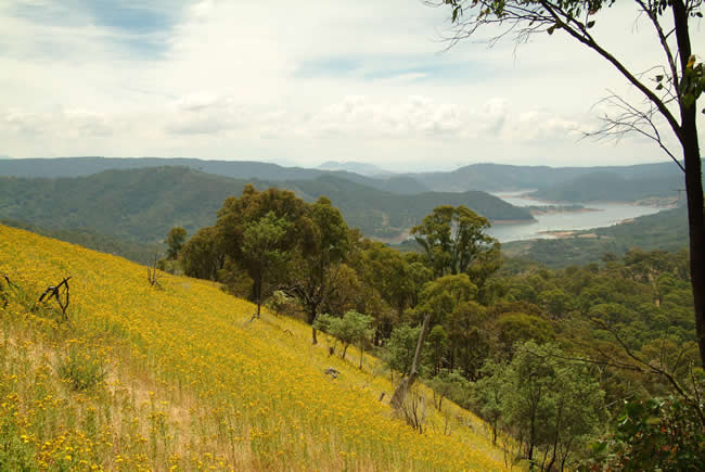 Lake Eildon from Skyline Road, alpine Victoria, Australia