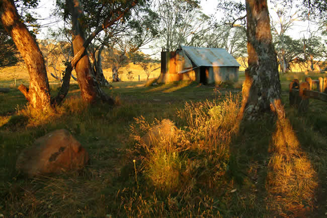First rays of dawn on Howitt's Hut, Howitt High Plains, alpine Victoria, Australia