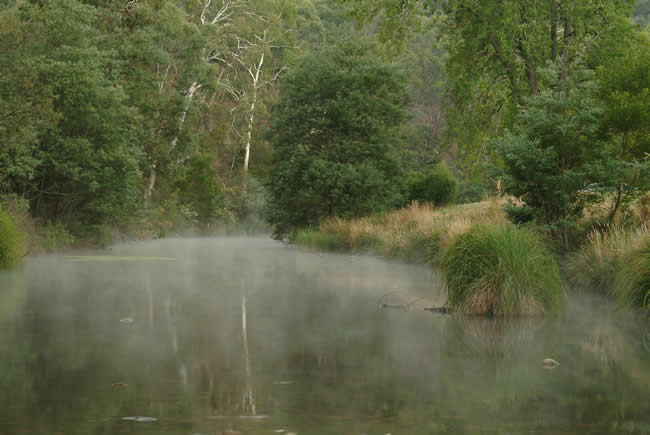 Morning mist on the Crooked River, near Talbotville, alpine Victoria, Australia