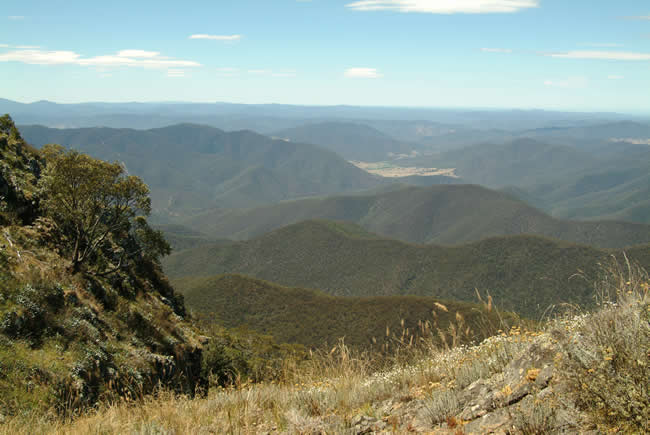East Pinnacle view, alpine Victoria, Australia