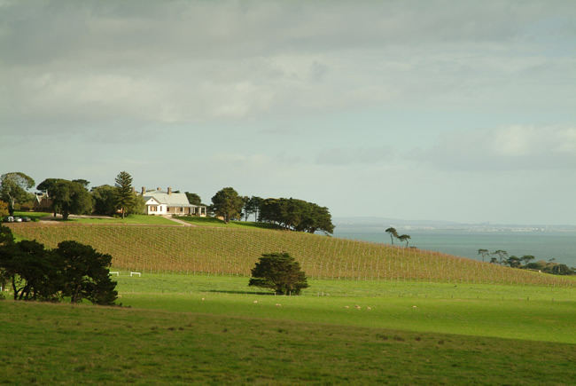 Spray Farm, Bellarine Peninsula, Victoria, Australia