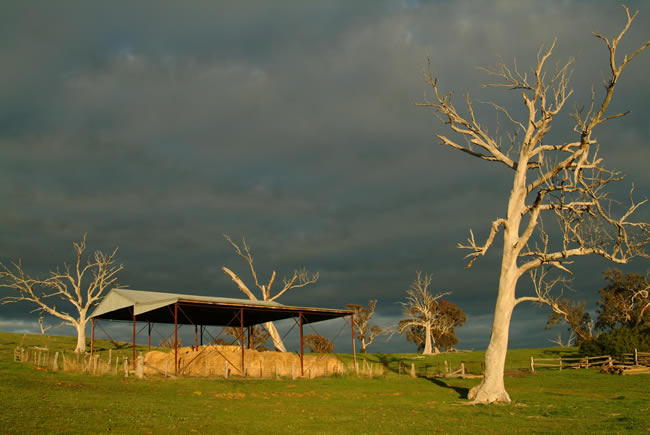Sunrise storm clouds over the Rowsley valley, near Bacchus Marsh, Victoria, Australia