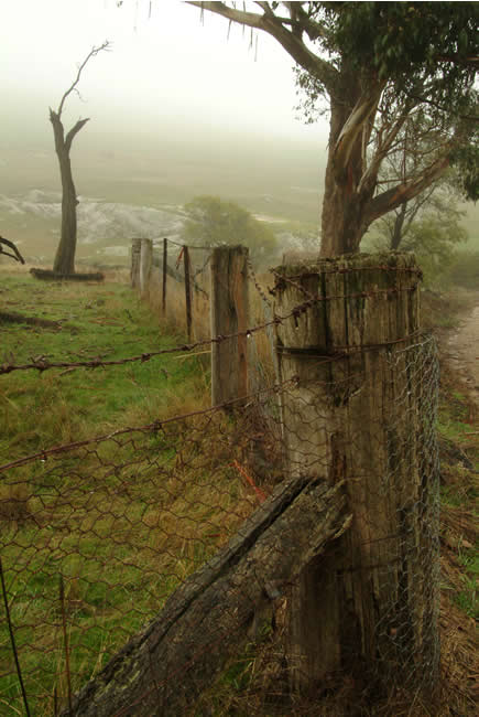 Cobaw foothills, Macedon, central Victoria, Australia