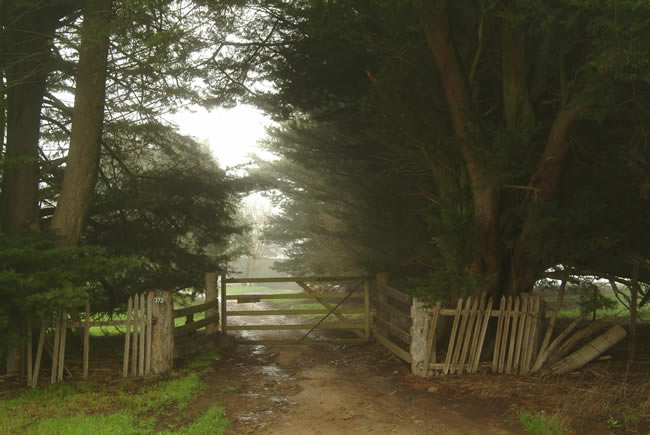 Farm gate, Gooch's Lane, Macedon Ranges, central Victoria, Australia