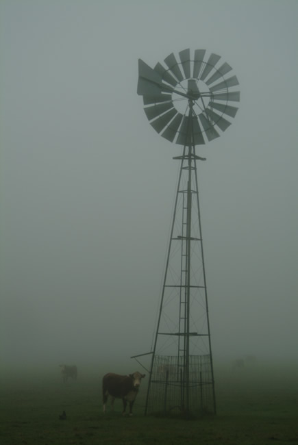 Windmill at Pipers Creek, near Kyneton, Macedon Ranges, central Victoria, Australia