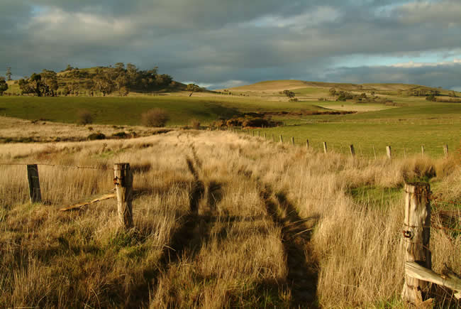 Rosebury Hill, Pipers Creek, near Kyneton, Macedon Ranges, central Victoria, Australia