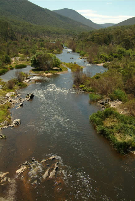 Snowy River from McKillop's Bridge, alpine Victoria, Australia