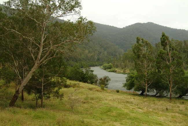 Evening, Jackson's Crossing, Snowy River, alpine Victoria, Australia