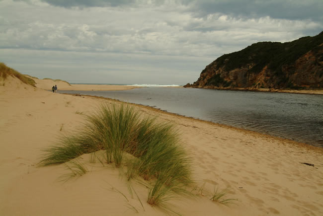 River mouth, Glen Aire beach, near Cape Otway, Otways Forest, Victoria, Australia