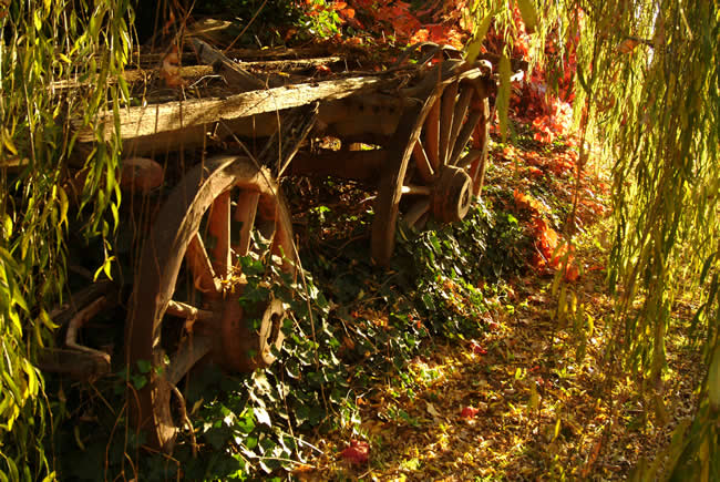 Cart in the sunlight, Clunes, western Victoria, Australia