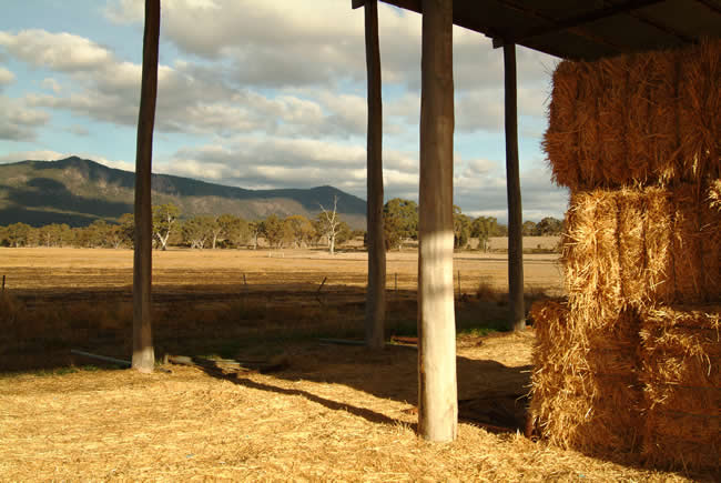 Hay shed, Eversley, Mt Cole State Park, northwest of Ballarat, western Victoria, Australia