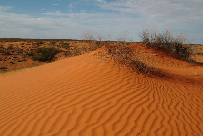 Wind pattern, North Simpson Desert, Northern Territory, Australia