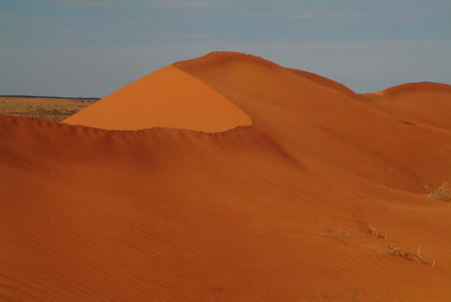 Dune, North Simpson Desert, Northern Territory, Australia