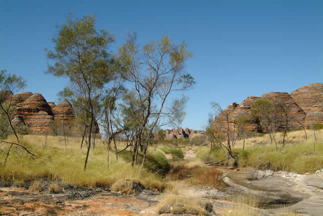 Purnululu National Park, or Bungle Bungle, Kimberley, Western Australia