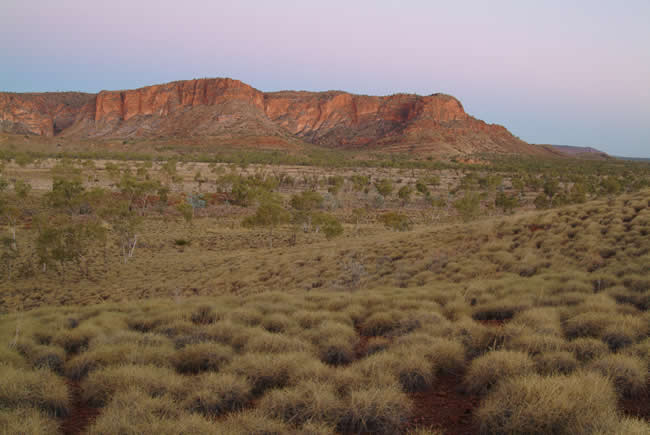 Purnululu National Park, or Bungle Bungle, at twilight, Kimberley, Western Australia