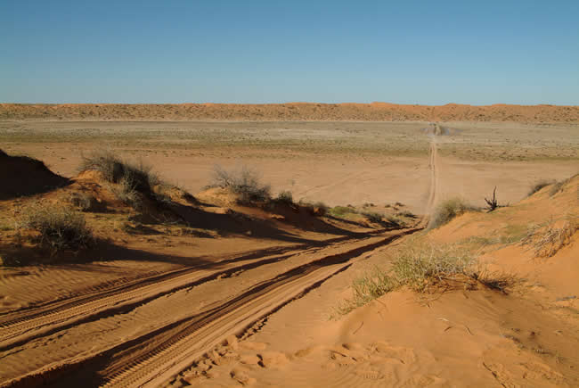 The QAA Line, Simpson Desert, Queensland, Australia