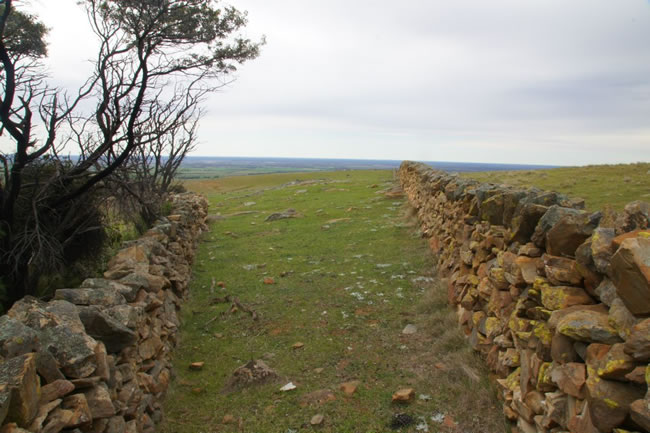 Stone walls between Swan Reach and the Barossa Valley, South Australia