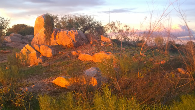 Afternoon sunlight lights up the white rocks at the White Rocks Reserve, Broken Hill, New South Wales Australia