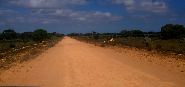 Eyre Bird Observatory access track, Western Australia