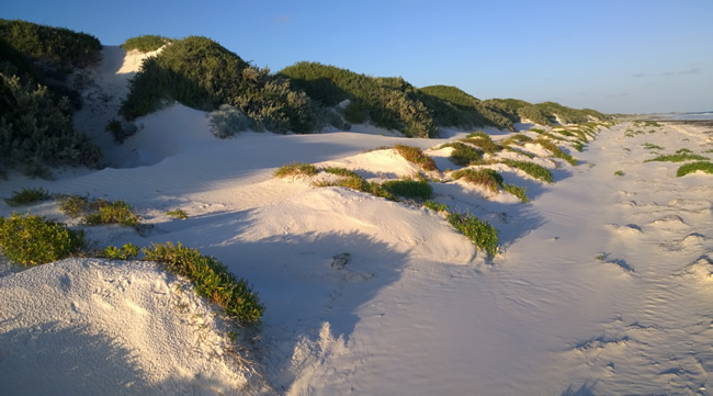 Eyre Bird Observatory. Beautiful but lonely beach, Eyre, Western Australia